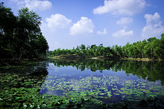A Slice of Heaven_Madhobpur Lake_Srimongal (The Finest Soldier [Passionate Learner]) Tags: blue sky green nature water beauty landscape photography nikon sylhet bangladesh srimongal d40 thefinestsoldier