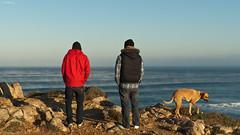the steaming sea (aperture one) Tags: winter vacation portrait people panorama portugal nature sunrise landscape urlaub menschen d200 landschaft sonnenaufgang winterlicht