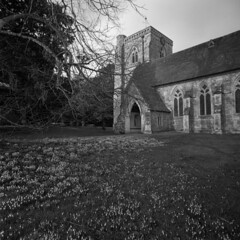 All Saints and Snowdrops (Skink74) Tags: uk roof england blackandwhite bw tree tower 120 6x6 film church grass stone mono hampshire bronica porch snowdrops churchyard rodinal ilford allsaints hursley windvane panf standdevelopment ogive panfplus s2a zenzabronicas2a zenzanonmc40f4 filmdev:recipe=6091 zenzanonmc40mm14 s2am042