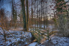 Bridge down to the River (Daniel J. Mueller) Tags: wood bridge snow ice nature river schweiz switzerland stream forrest zurich zrich preserve hdr naturschutzgebiet reuss 7xp ottenbach d3s mygearandme mygearandmepremium mygearandmebronze mygearandmesilver