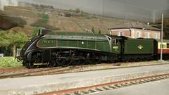 "LNER A4 class ""Merlin"" 60027 (skatuba) Tags: layout br merlin mallard streamlined plastico a4 00 lner gresley h0 carenata 60072"