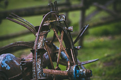 20160429-IMG_9440 (clutch photo) Tags: green