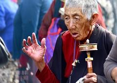 Devotion, Tibet 2015 (reurinkjan) Tags: lhasa tar 2015 tibetautonomousregion lingkhor tsang  tibetanplateaubtogang tibet buddhist prayerwheelkhorlo prayerwheelmanichoskhor buddhismsangsrgyaschoslugs lhasacounty tibetancustomtraditionbodlugs tibetanbpa tibetanpeoplebmi bmbang thewildfolksoftibetbsin tibetanpeoplebrik janreurink  lingkoroutercircumambulationroadinlhasaglingbskor