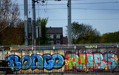 trackside graffiti (wojofoto) Tags: holland amsterdam graffiti bongo nederland netherland rubs wolfgangjosten wojofoto