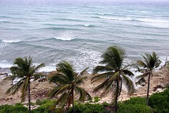 Paradise (Winsome J M) Tags: fromabove paradise hyattziva rosehall montegobay jamaica windy