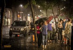 Storm on Ste-Catherine Street, Montreal (yravaryphotoart.com) Tags: storm night umbrella canon 50mm montreal soir nuit orage stecatherine parapluie canonef50mmf14usm canoneos7d yravary yravaryphotoart