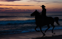 Pre-Dawn Gallop (SDRPhoto321) Tags: world new light sun haven color reflection nature wet water clouds canon vintage neck botanical eos gold exposure dof treasure florida outdoor perspective depthoffield national worth lands elevated mighty atlanticocean inspiring