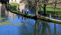 Et au milieu court un chemin... (Et si, et si ...) Tags: eau couleurs bourgogne chemin balade etang