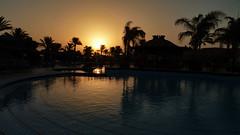 Nebq Bay Oasis sunrise (werner boehm *) Tags: pool sunrise meer redsea sonnenaufgang palmen wernerboehm tropicanagrandazur nebq bayrotes