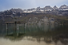 Lake Walenstadt (Thomas Mülchi) Tags: switzerland earlymorning mols 2016 cantonofstgallen lakewalenstadt churfirstenmountainrange