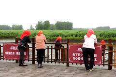Boat ladies (MelindaChan^^) Tags: life china people plant green field boat spring fisherman mel farmer melinda agriculture jiangsu rapeseed xinghua   melindachan channmelmel