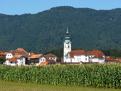A typical little Slovenian town Zgornje Gore (Bn) Tags: houses summer plants plant flower detail macro green industry church nature beer field fruit rural geotagged town flavor drink path farm farming harvest roofs climbing mais slovenia alcohol brewery crop lane plantation production hop agriculture brew maize depth 9m endless bitterness brewed styrian humulus goldings cannabaceae lupulus zgornje gore geo:lon=15037172 geo:lat=46298723
