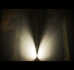 Midnight Man (LiesBaas) Tags: trees mist man night forest lights photo scary bomen woods pix foto nacht flash picture pic spooky mysterious horror eng donker lampen grappig creepycrawler zaklamp plaat lichten beammeupscotty angstig misterieus beangstigend samenspelen itscomingtogetyou liesbaas fotogravirus liesbaasfotogravirus itstheboogyman bhoehahahahahahaha dankjewelliefjevoorhetbewerken flashkingoftheuniverse