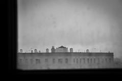 Brooklyn Museum, New York City, NY. (Marie-Laure Even) Tags: building immeuble brooklyn nyc ny usa newyorkcity city new york town big apple unitedstatesofamerica united states of america etatsunis marielaureeven fall autumn automne november novembre du nord north bigapple american americain newyorkais newyorkaise yorker 2011 window fenêtre brooklynmuseum museum roof toit top frame cadre ville amérique bw blackandwhite nb noiretblanc monochrome