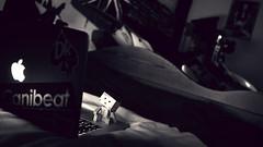 late night bloggi