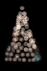 Julgranen i Lund är ljussatt (Peter Hillhagen) Tags: ljussatt fotosondag fs111204