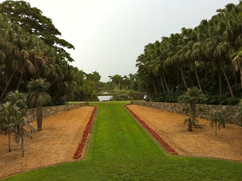 Orchids - Fairchild Tropical Botanic Garden