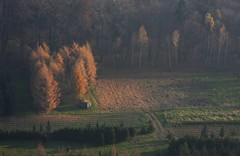 Polish Autumn (maciej.ka) Tags: above autumn sky forest landscape shots baloon poland polska polish aerial pologne