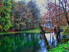 little paradise...on exp#320 (NURAY YUZBASI) Tags: autumn lake reflection tree green fall turkey trkiye bolu hazan yeil aa gl yansma onexplore sonbahar yedigller dipsizgl saariysqualitypictures