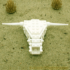 LEGO Cow Skull (bruceywan) Tags: cactus sculpture stilllife skull design cow desert lego geometry sphere math photostream lowell moc brucelowellcom