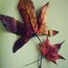 L'autunno a casa.
