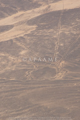 Ashaqif Kite 17 (APAAME) Tags: archaeology ancienthistory middleeast airphoto aerialphotography aerialarchaeology