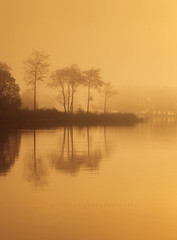 The famous 7 (Stuart Stevenson) Tags: uk morning autumn trees orange mist water sunrise reeds photography dawn scotland glow freezing telephoto serene loch wellies warmlight stirlingshire canon70300 lochard clydevalley nohorizon kinlochard scottishloch thanksforviewing canon5dmkii stuartstevenson stuartstevenson illuminatedfog