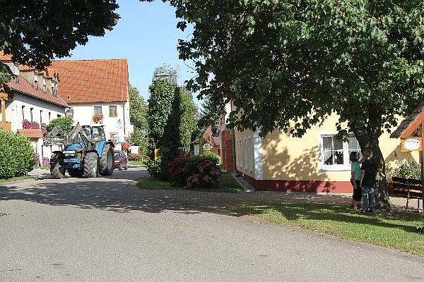Kastanienhof Selz