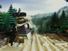 Lego Trooper (Lonnie.96) Tags: trees trooper forest pie soldier army lego background military bricks perspective tan camo pineapple forced minifigure brickarms