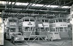 omnibuses 3138 (Andy Reeve-Smith) Tags: roe trolleybuses grimsbycleethorpestransport karrierw cleethorpescorporation grimsbycorporation crossleytdd423