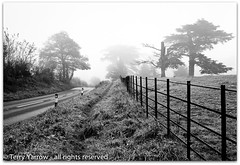 Beside the country lane (Terry Yarrow) Tags: uk morning autumn trees light england mist canon fence landscape atmosphere dorset countrylane footpath contrejour possibles eos5d badburyrings