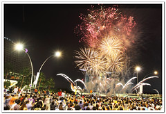 Happy New Year (l i j) Tags: public lights singapore fireworks cityhall crowd esplanade merlion happynewyear 2012 skypark marinabay merlionpark newyearcelebrations lijeshphotography newyear2012 newyearfireworksinsingapore