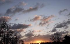 Zonsopkomst boven Oost-Souburg. (Omroep Zeeland) Tags: zeeland lucht weer zonsopkomst weerbericht weerfoto omroepzeeland weersverwachting stapelwolkjes weerinzeeland