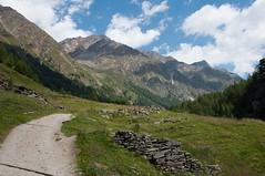 Flickr_Aug_11.jpg (Bjoern Klages) Tags: italien public flickr italia altoadige vorderkaser texelgruppe rableidalm