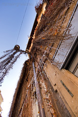 """via Sant'Eustachio • <a style=""""font-size:0.8em;"""" href=""""http://www.flickr.com/photos/89679026@N00/6665790615/"""" target=""""_blank"""">View on Flickr</a>"""