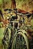 Las bicis de los Souks (osolev) Tags: africa metal bikes morocco maroc marrakech medina marrakesh souks marruecos bicicletas textured afrique bicis velos metalico zocos ltytr1 lamedina osolev