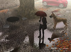 unedited photo  (SL Photo Studio) Tags: life autumn dog rain umbrella table photo leaf chair iron graphic fiat sl second 500 puddles tutorial dix reflects