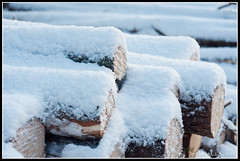 Snowed Loggs (mmoborg) Tags: winter snow cold kyla vinter sweden sverige snö 2012 mmoborg mariamoborg