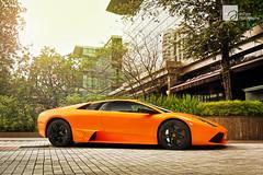 Sunkissed (anType) Tags: italy orange sports car italian asia exotic malaysia kualalumpur lamborghini luxury coupe supercar sportscar murcielago v12 lambo murci lp640 worldcars arancioatlas