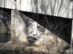 """American Graffiti"" (AWJ-photography) Tags: civilwar forts cannonsburg battlefields stonesriver fortressrosecrans murfreesborotennessee lytlecreek urbanparks stonesrivernationalbattlefield murfreesborogreenway earthenforts murfreesborophotographer awjphotography lunettepalmer lunettethomas"