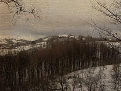 Gledićke planine - vrh Dren - Svetosavski pohod 064 (jecadim) Tags: winter snow mountains texture nature forest hiking hill zima priroda picnik sneg planinarenje šuma planine gledićkeplaninedrenadžinelivade
