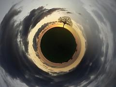Le petit Prince m'a dit ... (photosenvrac) Tags: photo ciel nuage arbre planete