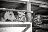 Horse farm. Râșnov, Romania (Mihai Biriş) Tags: bw horse farm cigarette smoke romania brasov rasnov thedefiningtouch deftouch