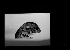face (Tom Milton) Tags: tom photography milton