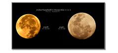 moon (MooMaaM Ph.) Tags: พระจันทร์