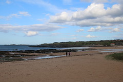 2016 - 3.5.16 North Berwick (80) (marie137) Tags: trees sea sky people sun fish beach dogs water weather architecture landscape movement sand collie rocks labrador play ben chips splash berwick murphy marie137