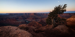 Dawn at Dead Horse Point (Liz Reed Photography) Tags: sunrise dawn utah canyonlands moab deadhorsepointstatepark