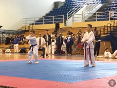 stefanou_15_5_2016_knockdown_203