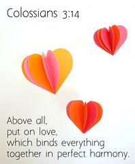 Colossians 3:14 (joshtinpowers) Tags: bible scripture colossians