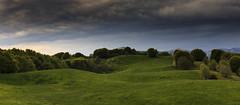 Simplicity (Enrico Cusinatti) Tags: travel sky italy cloud nature clouds canon eos italia nuvole liguria natura cielo fiori minimalismo fiore viaggi vacanze 6d orizzonte nubi canoneos6d enricocusinatti